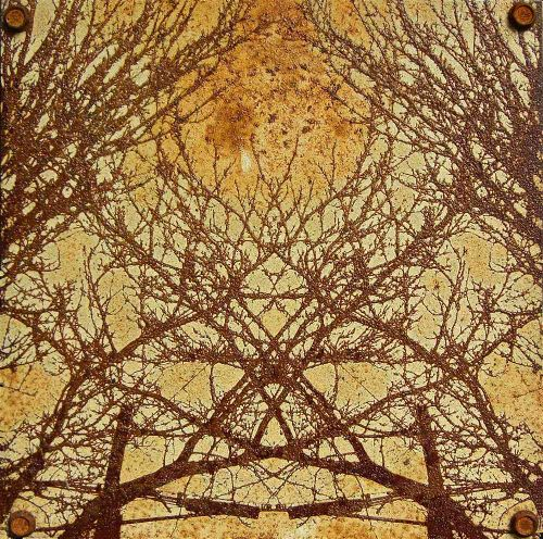 Tree branch rust art on steel panel by artist Garrett Price